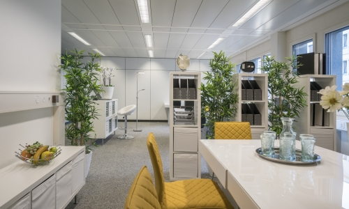 Kyburz Muster-Büro Homestaging-Homestyling
